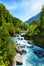 Vivid swiss landscape with pure river stream trees near alps switzerland Royalty Free Stock Photography