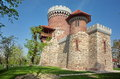 Vlad Tepes Castle Royalty Free Stock Photo