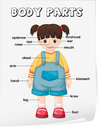 Vocabulary worksheet parts of the body Royalty Free Stock Images