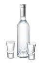 Vodka bottle and glasses detailed illustration for other use Stock Photo