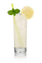 Vodka lemon Royalty Free Stock Photo