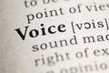 Voice Royalty Free Stock Photo