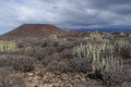 Volcanic plain on Tenerife Royalty Free Stock Photography