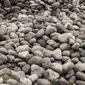 Beach of volcanic rocks Royalty Free Stock Photo
