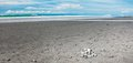 Volcanic sand beach Royalty Free Stock Photo