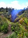 Volcanic steam vents hawaii spewing in Stock Photo