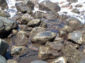 The volcanic stones on the beach Royalty Free Stock Photo