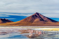 Volcano and flamingoes at the base of an andean in uyuni bolivia in laguna colorada Royalty Free Stock Photography
