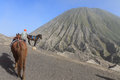 Volcano indonisia the horses man going down the mt bromo Royalty Free Stock Photos