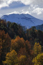 Volcano volcan lonquimay in the region of the araucania chile Royalty Free Stock Images