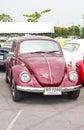 Volkswagen beetle retro vintage car bangkok thailand february in siam vw festival on february in bangkok thailand Royalty Free Stock Photos