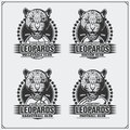 Volleyball, baseball, soccer and football logos and labels. Sport club emblems with leopard. Royalty Free Stock Photo