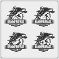 Volleyball, basketball, football and soccer logos and labels. Sport club emblems with hammerhead shark.
