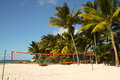 Volleyball court on the beach under palm trees at mauritius Royalty Free Stock Image