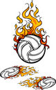 Volleyball Flaming Ball Logos Stock Photo