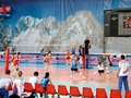 Volleyball: France against Russia Royalty Free Stock Image
