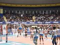 Volleyball Warm up Stock Photos