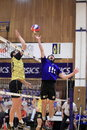 Volleyball - Zdenek Hanik Stock Photography
