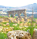 Volubilis in morocco africa the old roman deteriorated monument and site Stock Photography