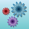 Volume color flowers on a blue background Stock Photography
