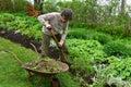 Volunteer woman gardener digging in flowerbed female working flower garden at park volunteering concept Royalty Free Stock Image