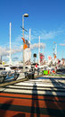 Volvo Ocean Race 2015, Auckland