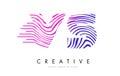 VS V S Zebra Lines Letter Logo Design with Magenta Colors