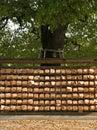 Wünsche auf einem Baum in Tokyo Japan Stockbilder