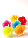 Wafer roses Stock Images