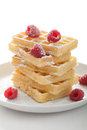 Waffle with raspberry and icing sugar fresh Royalty Free Stock Images