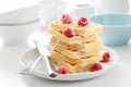Waffle with raspberry and icing sugar fresh Royalty Free Stock Photos