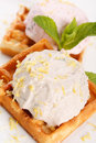 Waffle, whip and mint Stock Photo