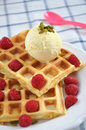 Waffles with ice cream and berries fresh topped vanilla fresh Royalty Free Stock Photo