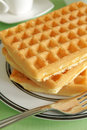 Waffles stack of plain with no butter or syrup Royalty Free Stock Photo