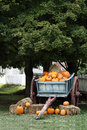 Wagon Full of Pumpkins Royalty Free Stock Photo