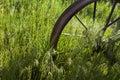 Wagon wheel in grass at ranch Royalty Free Stock Photo