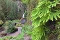 Wahclella Falls with Maidenhair Ferns