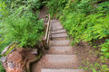 Wahclella Falls Wooden Stairs
