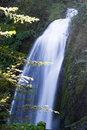 Wahkeena Falls Waterfall Columbia River Gorge Oregon Royalty Free Stock Photo