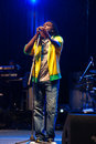 The Wailers in Concert Stock Image