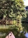 Wailua River on the Island of Kaui Royalty Free Stock Photo