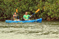 Wailua River Kayakers Stock Image