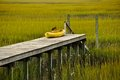 Waiting on the tide kayak dock in marshes for to come in Stock Photography