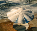 Waiting in the winter shadows a photograph of a patio with an outdoor picnic table and umbrella dusted with snow and Royalty Free Stock Photography