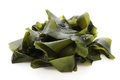 Wakame soft seaweed edible on white background Stock Photos