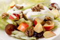 Waldorf salad closeup Royalty Free Stock Photo