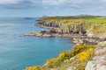Wales coast path towards caerfai from st non s pembrokeshire uk near bay to bay in the national park ramsey island follows Royalty Free Stock Image