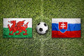 Wales vs. Slovakia on soccer field