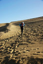 Walk in desert Royalty Free Stock Photo