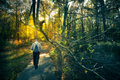 Walk in forest man walking through dark woods with light ahead Royalty Free Stock Images